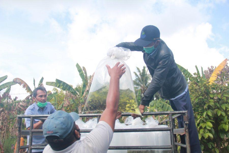 Penyaluran benih ikan kepada pembudidaya di Kalimantan | Dok. Humas Ditjen Perikanan Budidaya | Bicara Indonesia